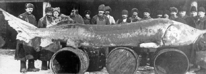 Самые необычные факты о Каспийском море...