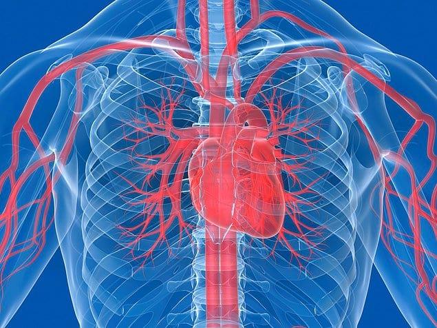 Кухонный кран должен быть включен во весь напор на протяжении 45 лет, чтобы вылить количество воды, равное количеству крови, перекачанной сердцем за человеческую жизнь средней продолжительности.
