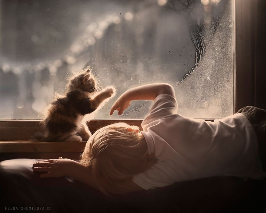 Фотограф создает потрясающие снимки своих детей с животными в деревне