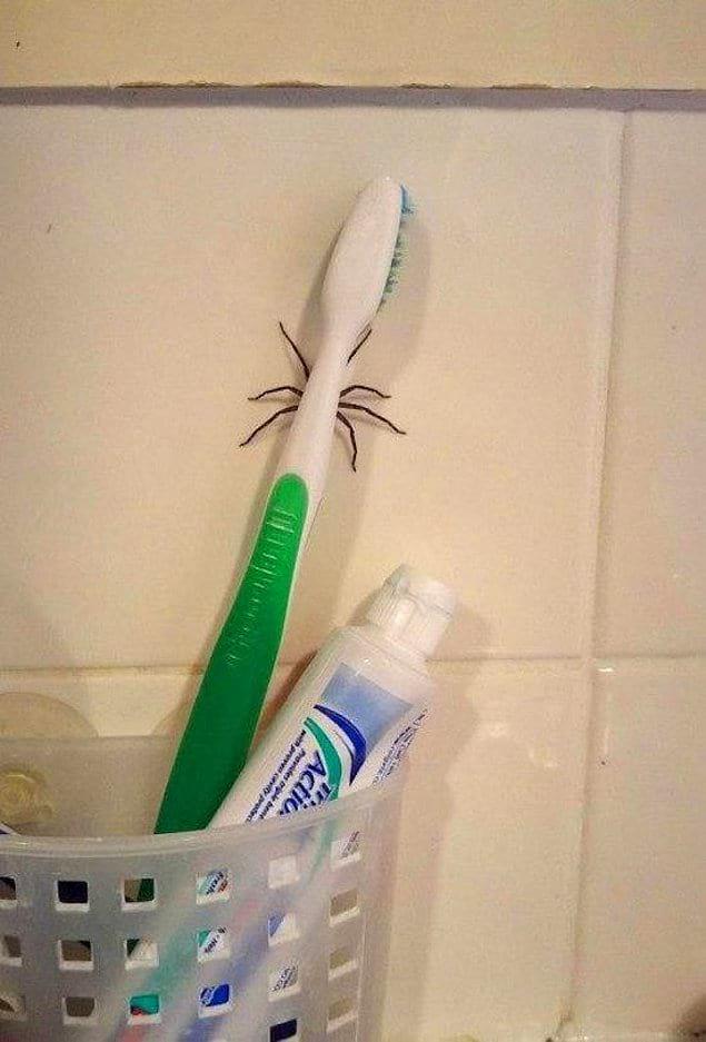 Чистить зубы? Больше никогда!