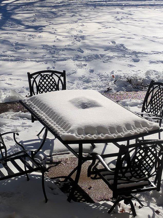 Не говорите, что это странно, но ведь снег на этом фото выглядит так аппетитно ❄️
