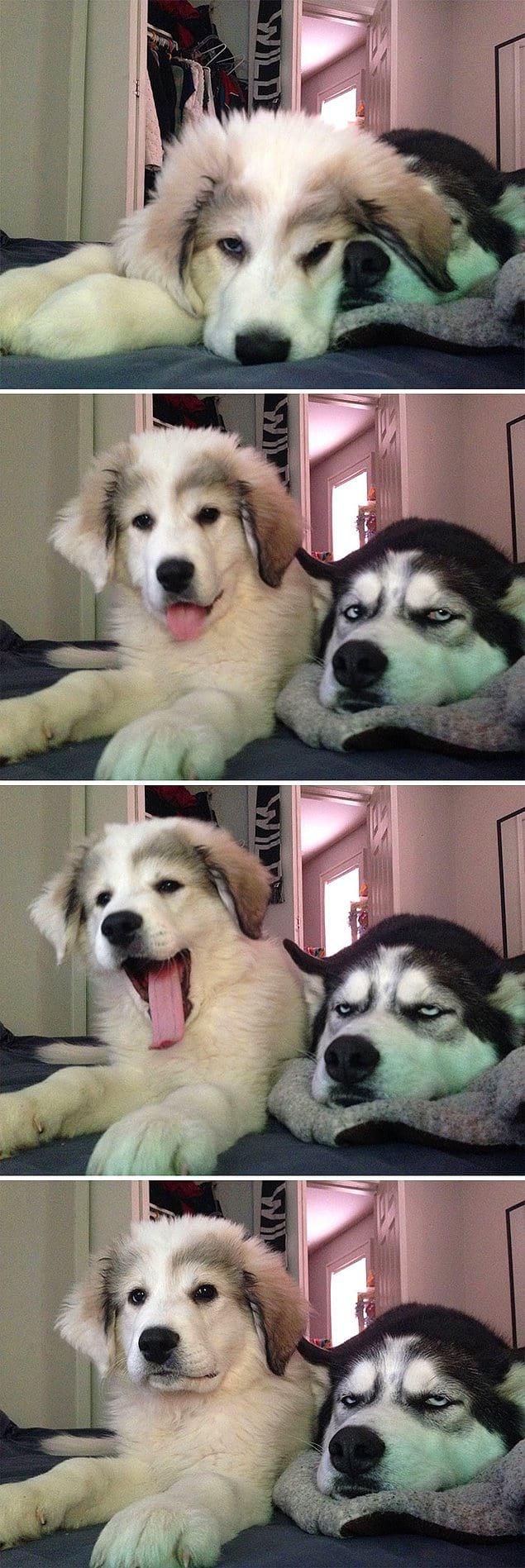 Ему явно нравится его новая сестричка