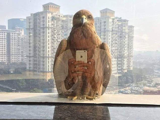 Пожалуй, лучший mirror look века 👏