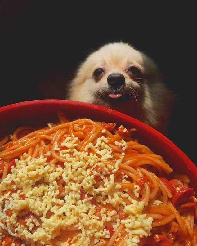 """""""Спагетти?!"""""""