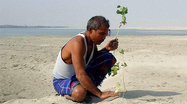 Именно в тот момент Джадав и определил для себя миссию своей жизни, чтобы спасти остров Маджули от эрозии посредством высадки деревьев.