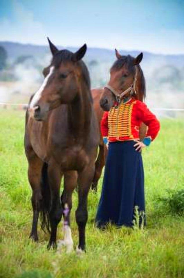 Когда в прошлой жизни ты был немного лошадью...