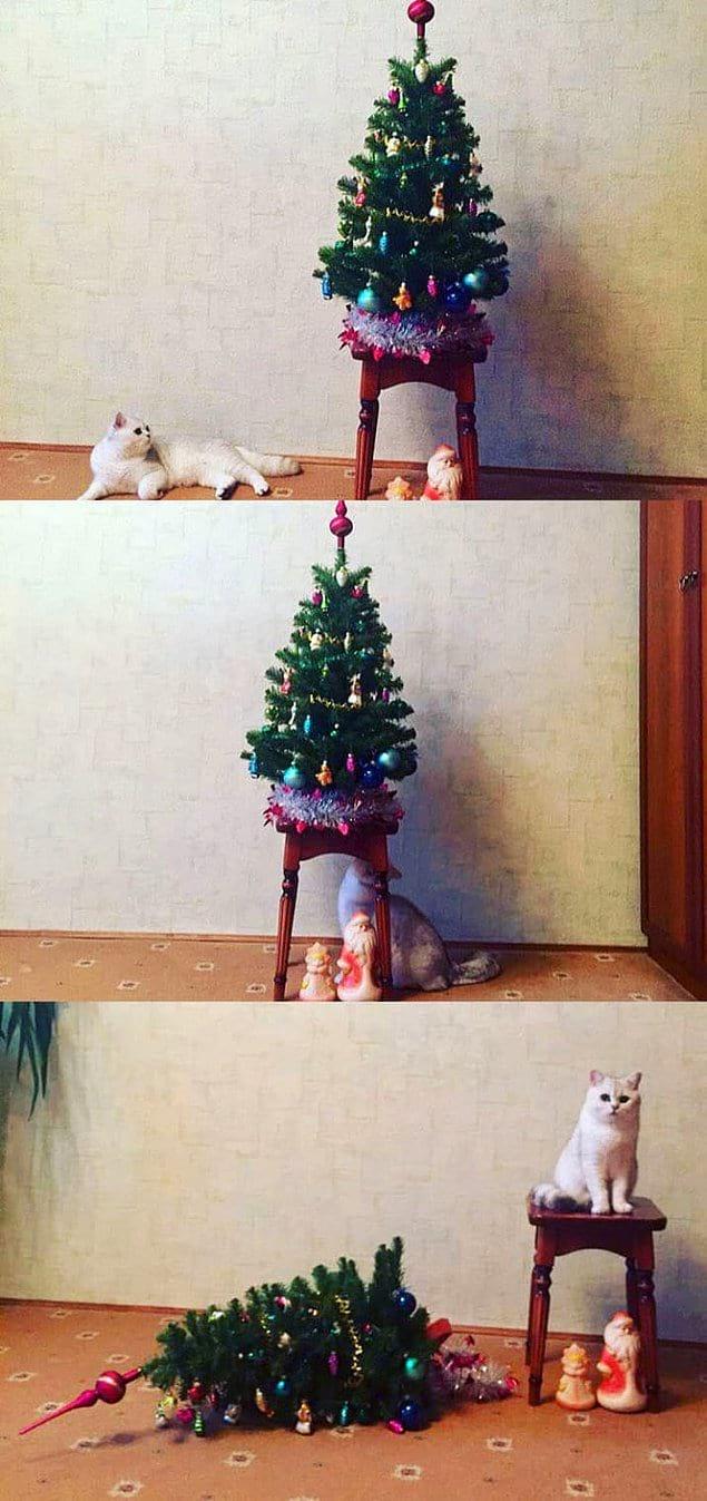 Похититель Рождества:
