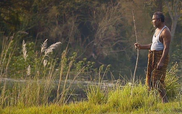 Причиной, по которой Маджули становится меньше, как предполагается, являются большие насыпи на реке Брахмапутра.