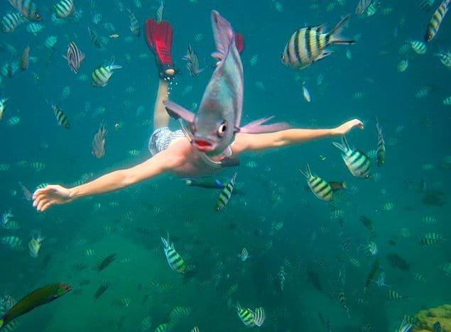 Рыба подплыла так, что сделала из этого мужчины русалку 😂