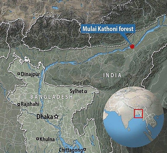 За последние 70 лет Маджули сократился более чем наполовину, и есть опасения, что он будет затоплен в следующие 20 лет.