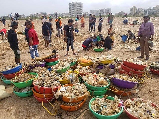 5 миллионов кг пластика убрали с пляжа Мумбая, и туда наконец смогли вернуться черепахи