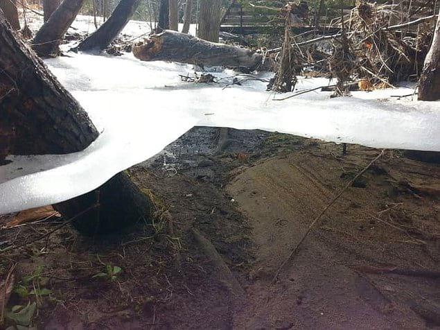 А это ледяная корка, оставшаяся после того, как паводковая вода ушла