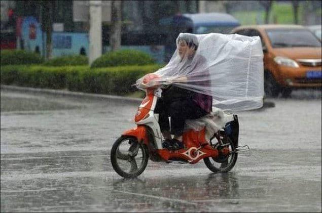 Хотя зачем им зонт, когда вокруг столько всего, что может защитить от дождя!