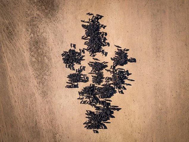 Кормление скота во время засухи в Австралии.