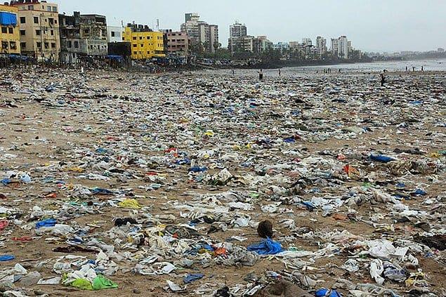 Но, кажется, люди начинают одумываться. Так, в Мумбае, Индия, волонтеры очистили знаменитый пляж Версова от мусора, и туда наконец смогли вернуться черепахи