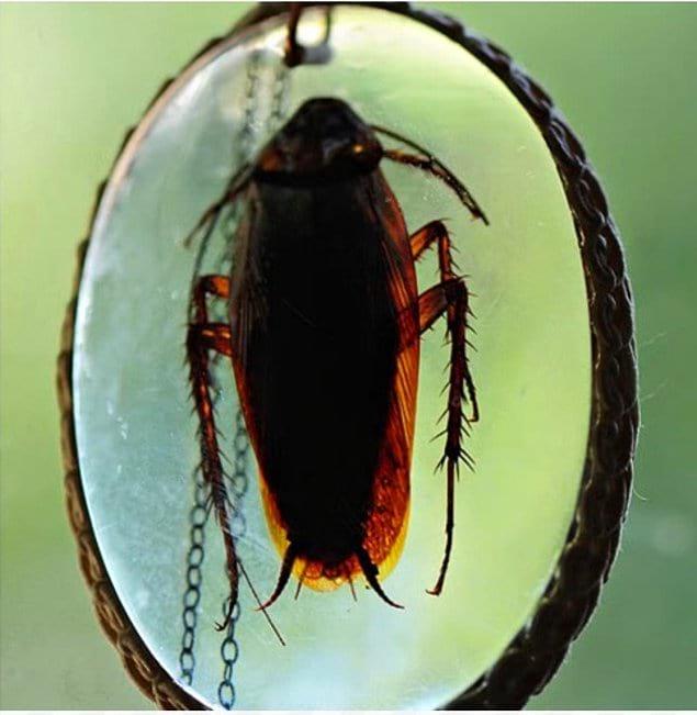 Ожерелье с тараканом... Хотите себе такое?