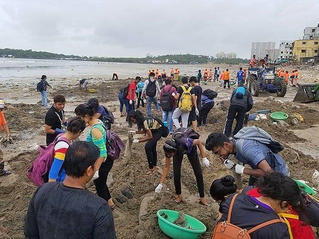 Всего с пляжа за 85 недель вывезли 5 миллионов (!) кг пластика