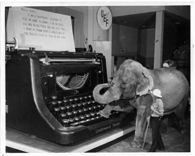 Просто слон, использующий гигантскую пишущую машинку