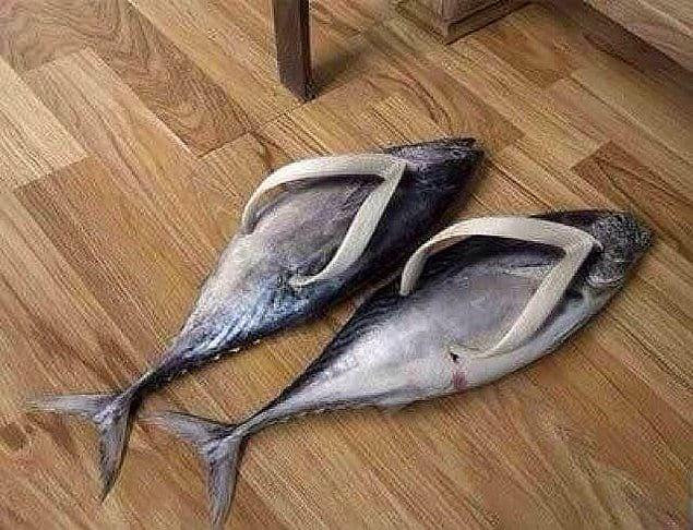 Дизайнер наверняка большой фанат рыб