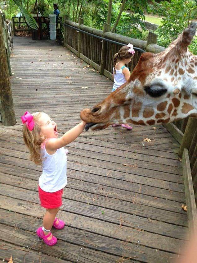 Думаю, девочка еще долго не захочет ходить в зоопарк