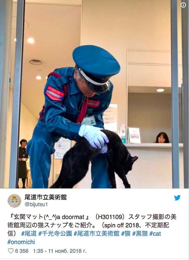 С тех пор между музеем и котом началось противостояние.