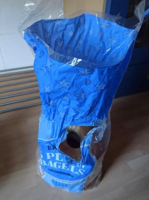 А этот супруг решил именно так открыть пакет с хлебом. Варвар, что сказать...
