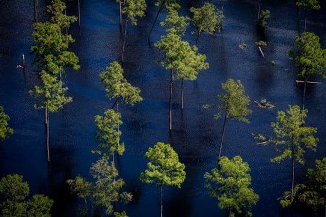 """Наводнение во время урагана """"Флоренс"""" в Северной Каролине (США). Снимок сделан 18 сентября."""