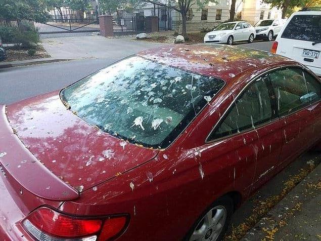 Это ж еще надо было умудриться так поставить машину