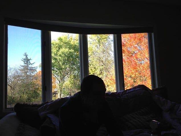 Этот человек может наблюдать за окном сразу все четыре сезона. Не это ли круто?
