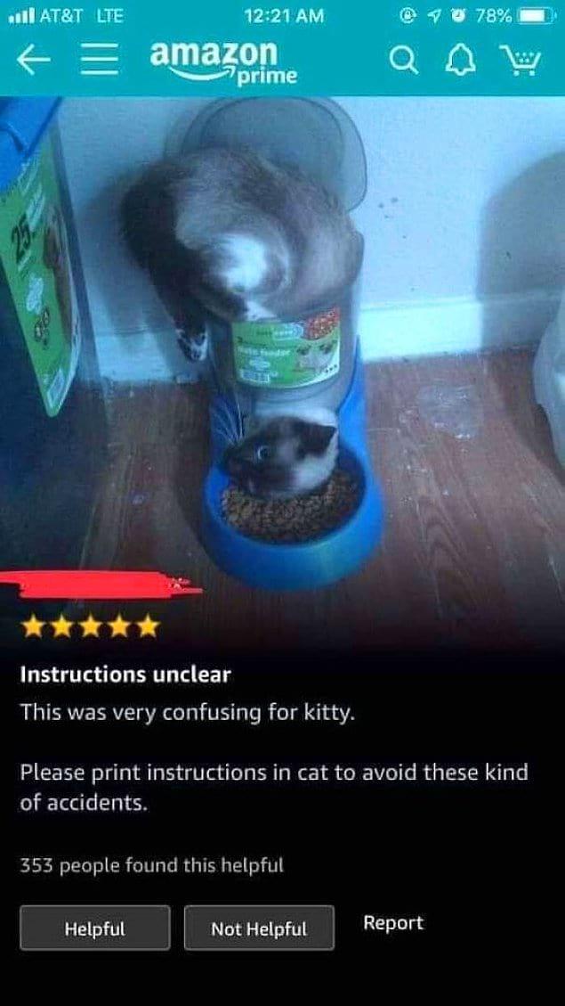 Кот не смог прочесть инструкцию.