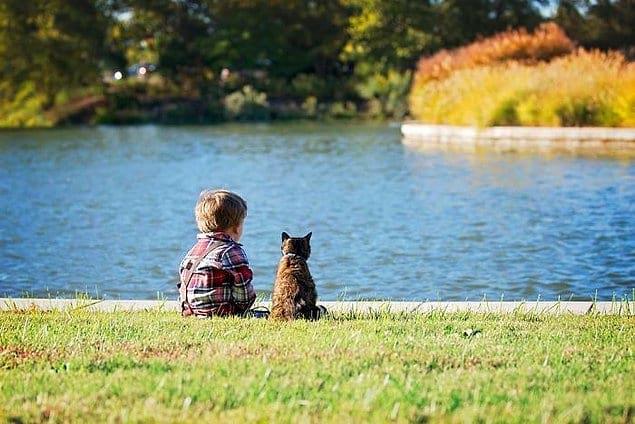 """""""Мой сын полюбил нашу кошку со дня своего рождения. Эта любовь оказалась взаимной""""."""