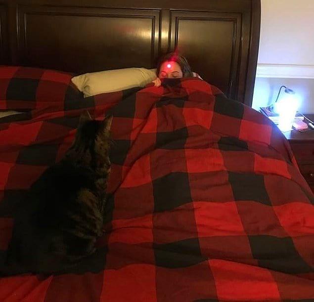 Мужской подход к игре с котейкой.
