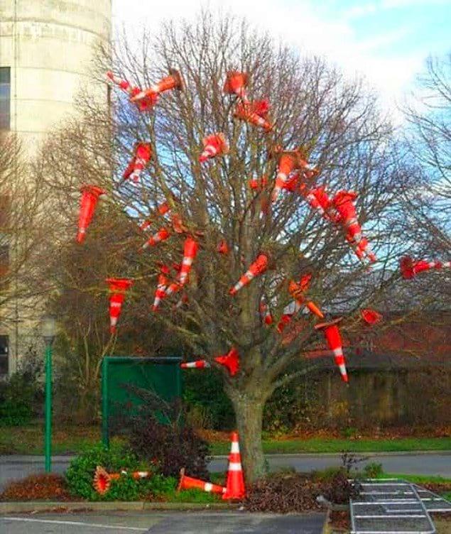 Они способны украсить дерево дорожными конусами