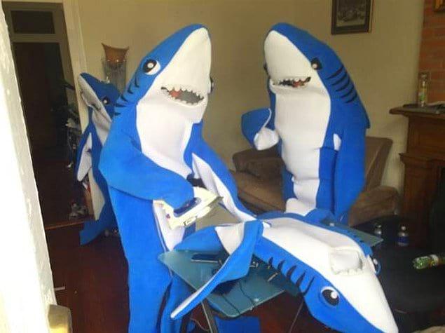 Просто две акулы гладят третью. Ничего необычного