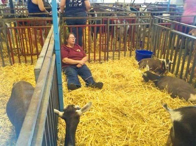 Смотрители зоопарков тоже хотят спать - питомцы их понимают.