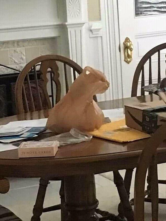 То ли кошка, а то ли виденье