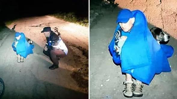 В Румынии бездомная собака всю ночь согревала травмированного велосипедиста